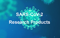 SARS-CoV-2 Research Products Update