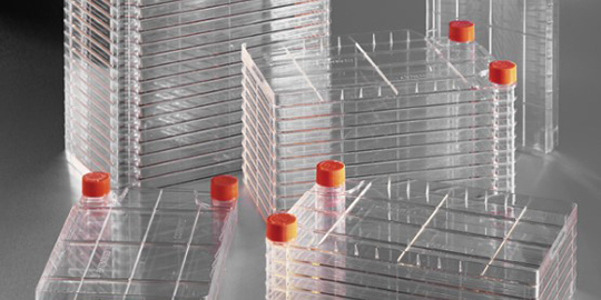 Large Scale Cell Culture