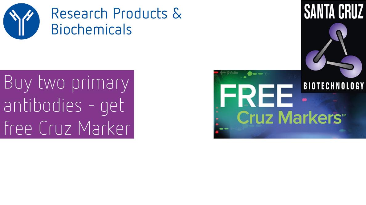 Santa Cruz Free Markers