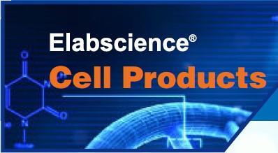 Elabscience Cell Products