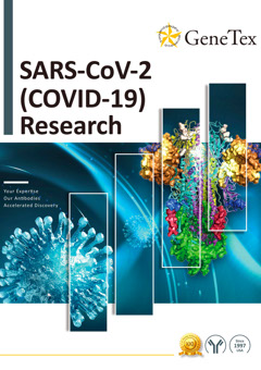 GeneTex SARS-CoV-2