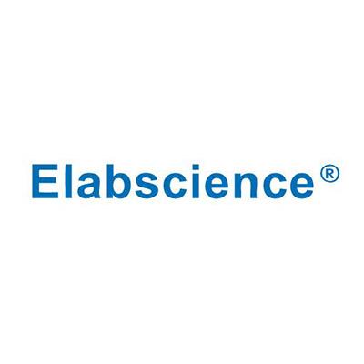 Elabscience Biotechnology