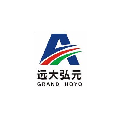 Wuhan Grand Hoyo Co.